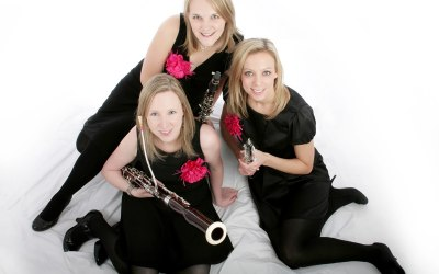 The Marylebone Trio provides classical music for weddings and events