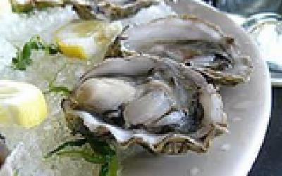 The Shuckin'Seafood Shack