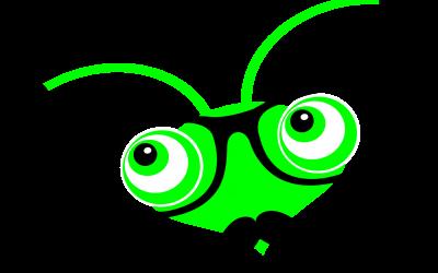 The Shutter Bug