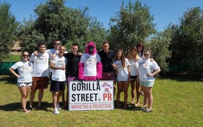 Gorilla Street Ltd 7