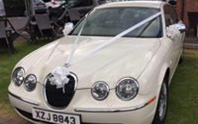 Ivory Jaguar
