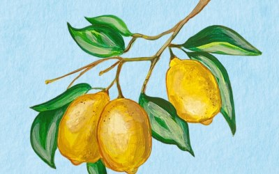"Acrylic painting ""Juicy lemons from Sorrento"""