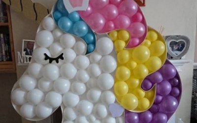 Nessy's Novelty Balloon Art 7