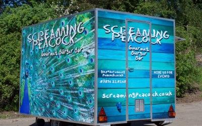 Screaming Peacock
