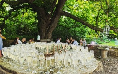 Where else to hold toast than underneath of giant horse chestnut tree in Woodland wedding venue.