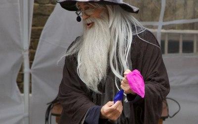 Wizard Magician Service 7