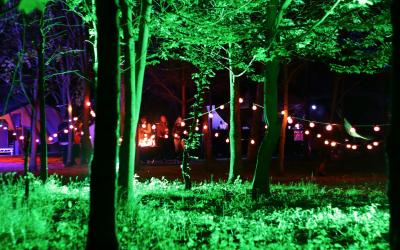 Woodland Wedding Lighting - EWPSL