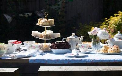 Butterfly Garden Tea Parties 8