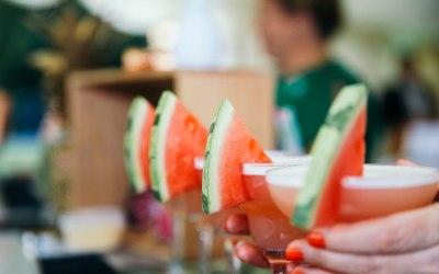 Watermelon Daiquiris for a fundraiser