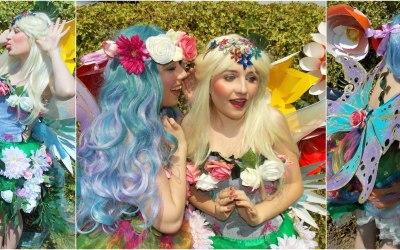 Fairy Entertainment