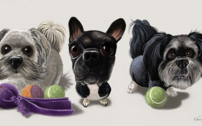 I also undertake pet caricatures
