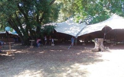 TentStyle 7