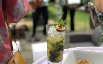 Fresh & Delicious Cocktails