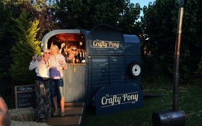 The Crafty Pony 2
