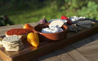 Vegan homemade cheeses