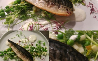 Mackeral, Pea and Horrseradish