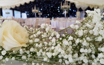 Sprinkle of Magic Wedding Planners 6