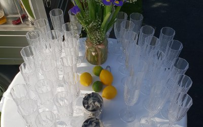 Hire our Gatsby reusable flutes?