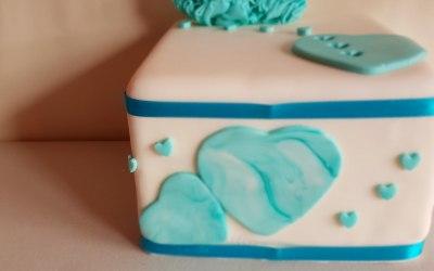 Sugar Crumb Cake Company