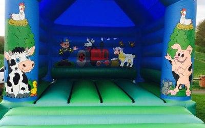 DM Inflatables & Party Services  3