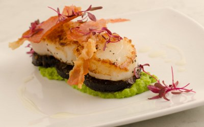 Classic pan fried scallops with black pudding, pea pure and crispy Prosciutto