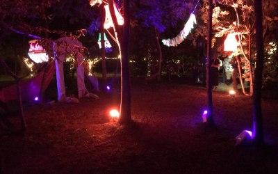 Camping Wedding Lighting