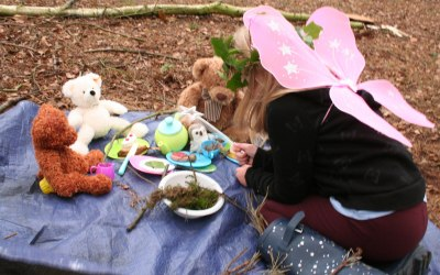 How about a teddy bear's picnic or woodland fairy party?