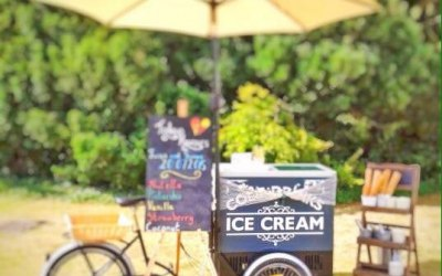Plum Honeychurch & Her Ice Cream Tricycle 3