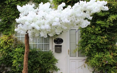 Blossom Canopy for hire