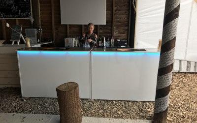Bubbly Bars & Bartenders 4