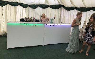 Bubbly Bars & Bartenders 8