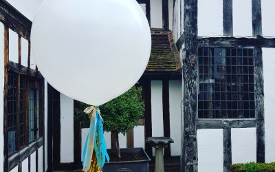 Rising High Balloons 5