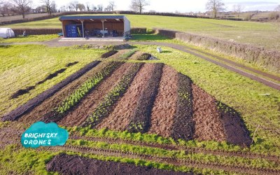 A customer's flower farm, we shoot their story and our photos help with their planting planning, they get a great view from the sky!
