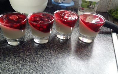 Panacotta with forest fruit