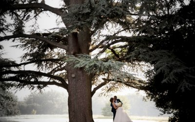 Wedding couple in the grounds Photography