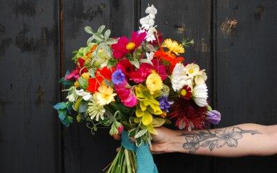 Rosacanina Flowers 7