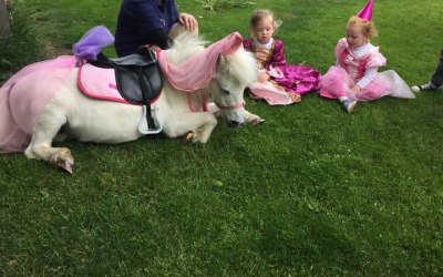Mobile Princess Party Pony