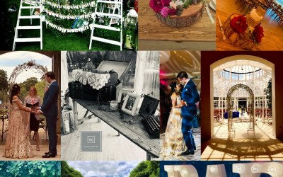 White Orchid Events  7