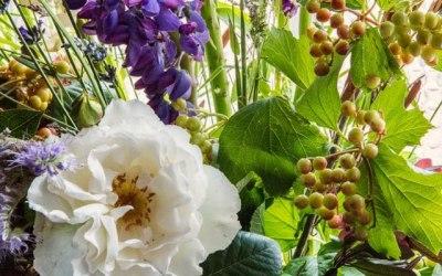 June produce