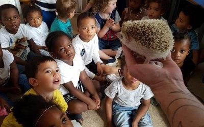 Schools, nurseries, educational presentations