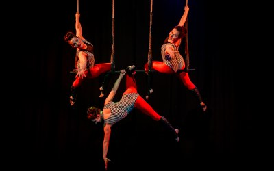 AirCraft Circus Performance 2
