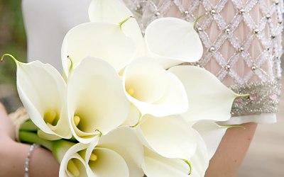 Smallridges Florist 3