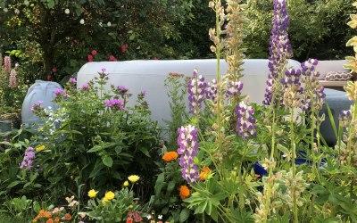 Hampshire Hot Tub & Spa Hire 9