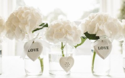 K.T. Weddings  1