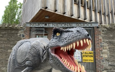 Reggie visiting Dublin schools