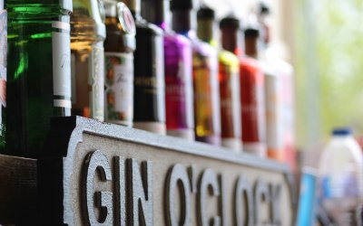 The Secret Bars - Gin Selection