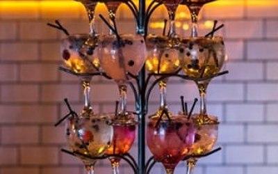 The Gin & Fizz Bar 3