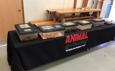 Animal Encounters  5
