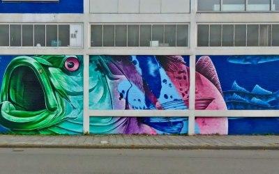 Graffiti Artists 2 Hire  5