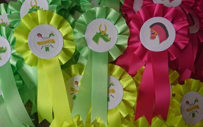 Hannah's Hobby Horses 2